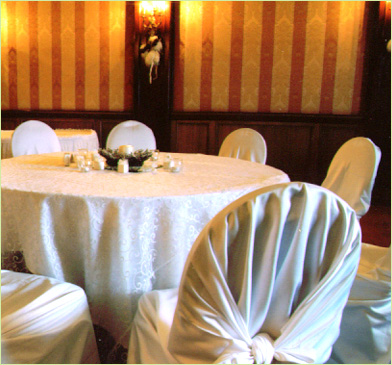 CHAIR COVER WITH BACK KNOT