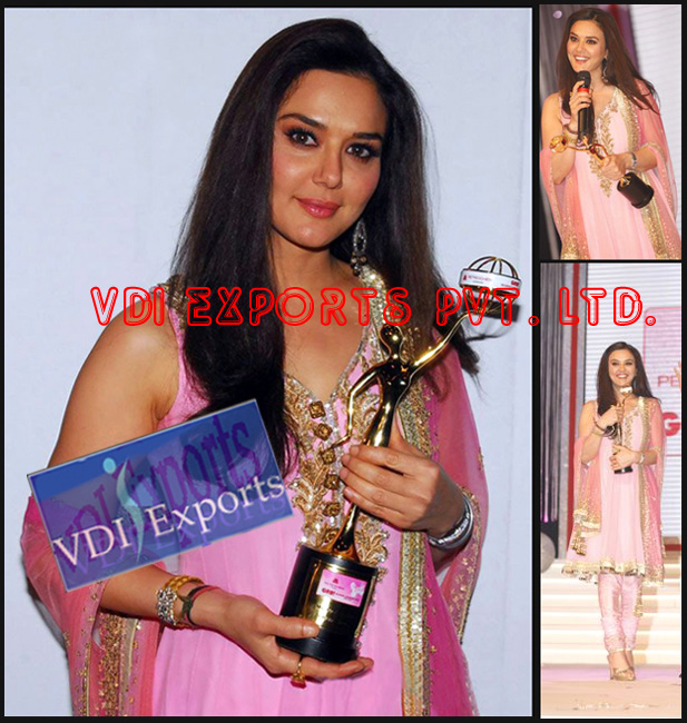 BOLLYWOOD PREITY ZINTA GR8 WOMEN AWARDS SUIT