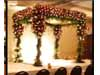 FLORRA WEDDING BACKDROP